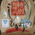特別栽培米コシヒカリ(精米)2kg